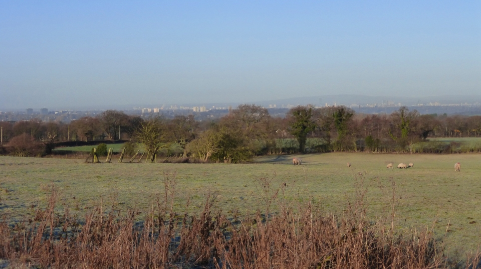 View west from near Torkington Lane