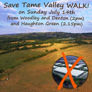 Woodley save tame valley